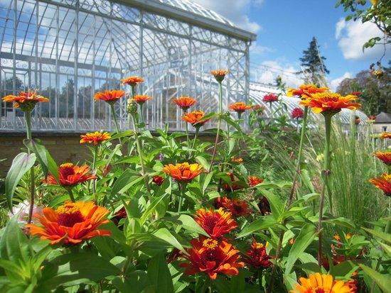 Le Jardin Potager de Bonnétable