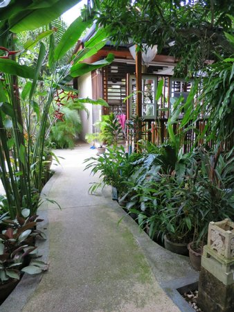 Thai Palace Resort: Walkways