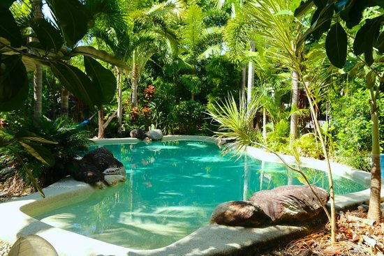 Boutique Bungalows: Beautiful pool