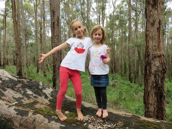 Balingup Heights Hilltop Forest Cottages : The girls in the forest