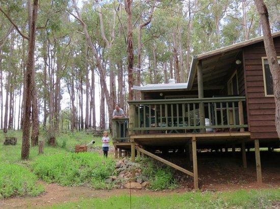Balingup Heights Hilltop Forest Cottages : Gum Nut Cottage