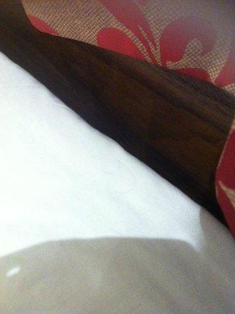 Westbury Hotel Kensington: Hair in sheets