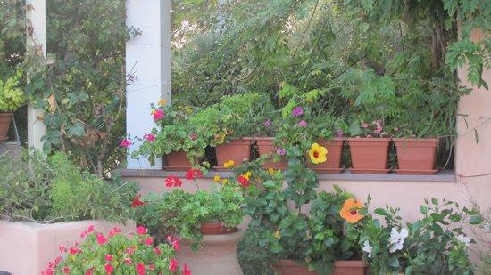Park Hotel Asinara: Une terrasse bien décorée