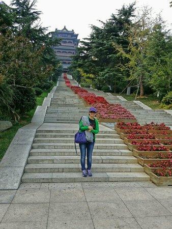 Weihai Huancui Tower Park: 乾淨整潔的公園,大推( ̄∇ ̄)