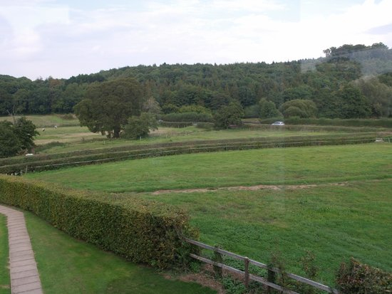 Mill Farm: The view from our bedroom window.