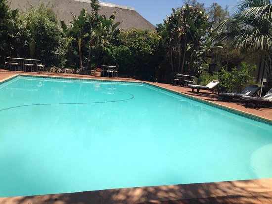 Leriba Hotel: The swimming pool