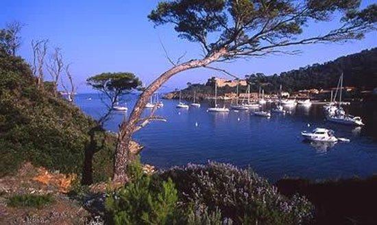 Un E Vue Sur Le Port Picture Of Le Manoir PortCros TripAdvisor - Location port cros