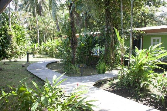 La Baula Lodge : Cabañitas