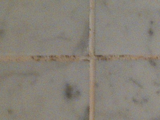 Millennium Hotel London Mayfair: Bathroom tile - mildew