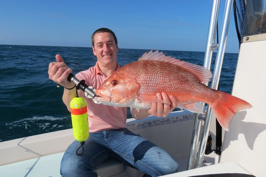 red snapper picture of daytona beach fishing charter