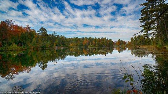 Sterling Ridge Resort: Pond Area