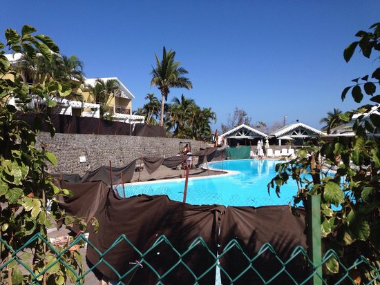 La piscine avec ces palmiers de toutes sortes for Archipel piscine castres
