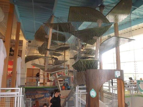 Glazer Children's Museum: Climbing activity!