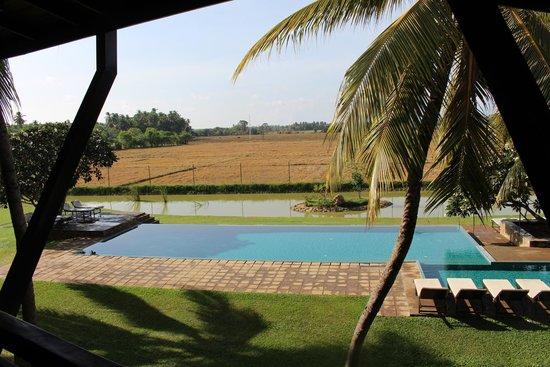 Kithala Resort: vue de la terrasse de l'hotel
