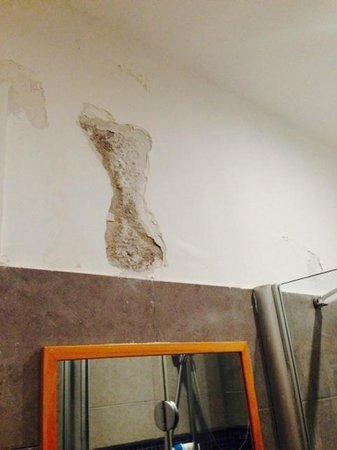 Hotel La Pergola di Venezia: Goteras humedas en el baño