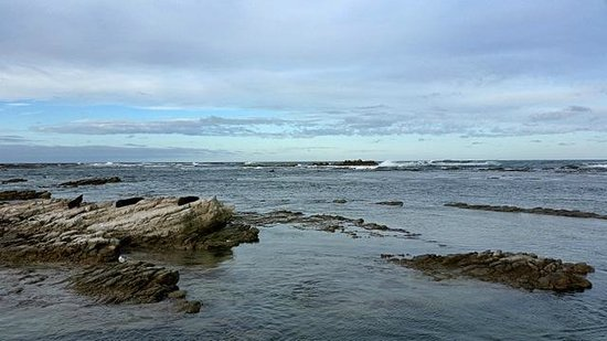 Kaikoura Peninsula Walkway: strong waves, avoid the rocks and tide can come in fast.