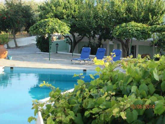Evelin Hotel: Pool area