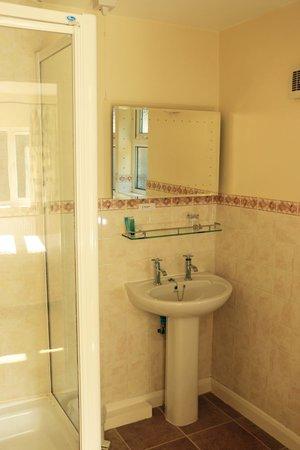 Dawyk Beech: Single room shower room