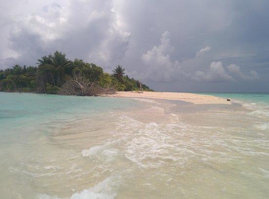 Kuri Inn : Omadhoo island beach