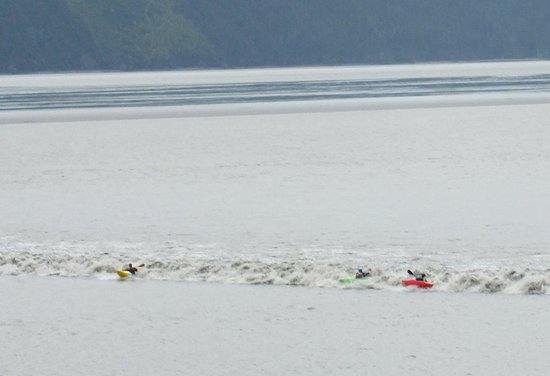 Bore Tide in Turnagain Arm: canoeists on the bore tide