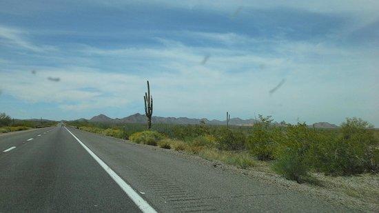 Sonoran Desert National Monument Arizona United States