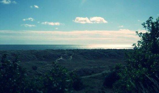 Hermanus Holidays: The view from Hermanus! Stunning