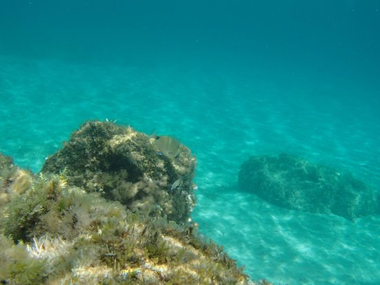 Ibiza Express Santa Eularia: Море