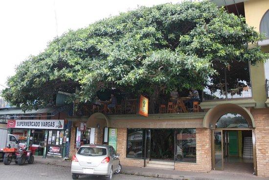Tree House Restaurante & Cafe: Exterior