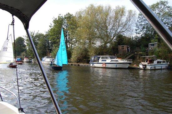 York Marina: HELP!