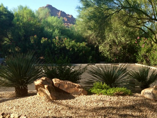 JW Marriott Scottsdale Camelback Inn Resort & Spa: wiew from our patio