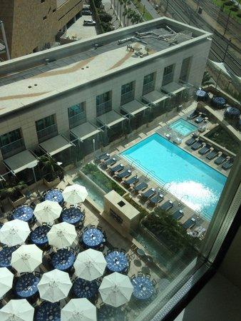 Omni San Diego Hotel: Patio/pool from 14th floor
