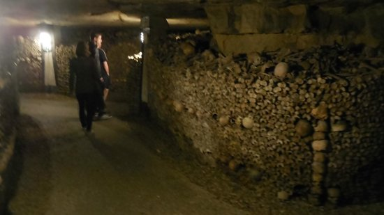 Stacked bones - Picture of The Catacombs, Paris - TripAdvisor