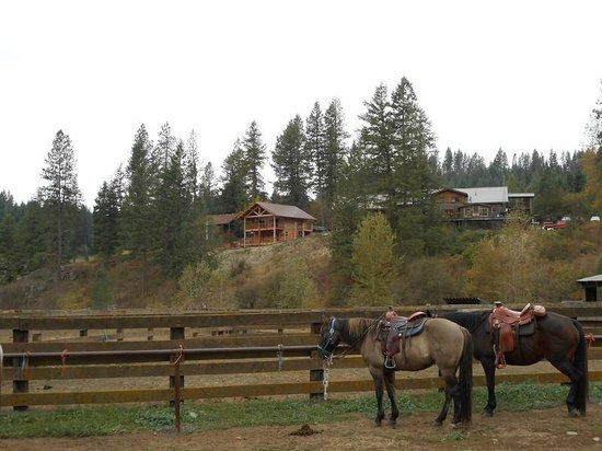 Red Horse Mountain Ranch: Cabin and Main lodge