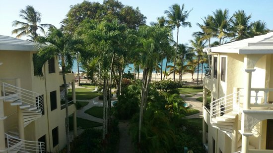 Cabarete Palm Beach Condos: Studio apartment view
