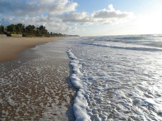Aconchego Do Porto: Manhã na praia próximo ao Hotel