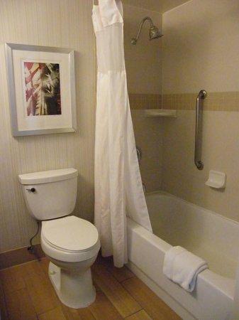 Hilton Garden Inn Los Angeles/Hollywood: bathroom...
