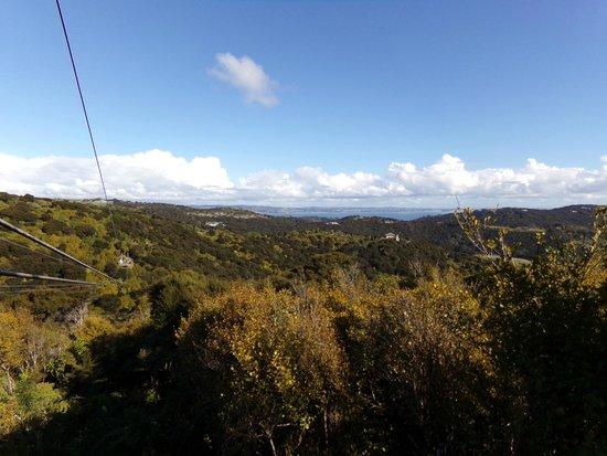 EcoZip Adventures: Beautiful Waiheke vista