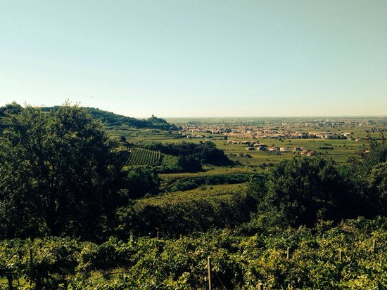 Agriturismo Libero: Soave old Castle... Great views from the house!