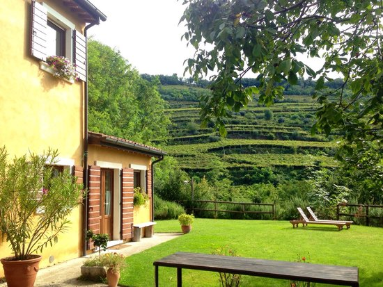 Agriturismo Libero: You can't be asking for more!!