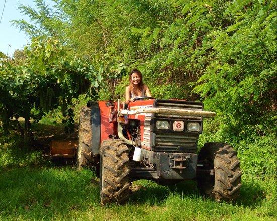Agriturismo Libero: Need a ride??