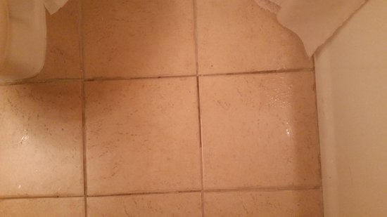 Golden Nugget Laughlin: missing tile grout