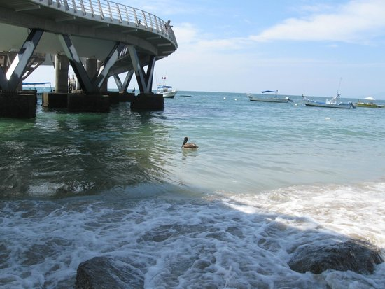 Los Muertos Pier: A popular local swimming area in the late afternoon.  Not bad prices at the north side restauran