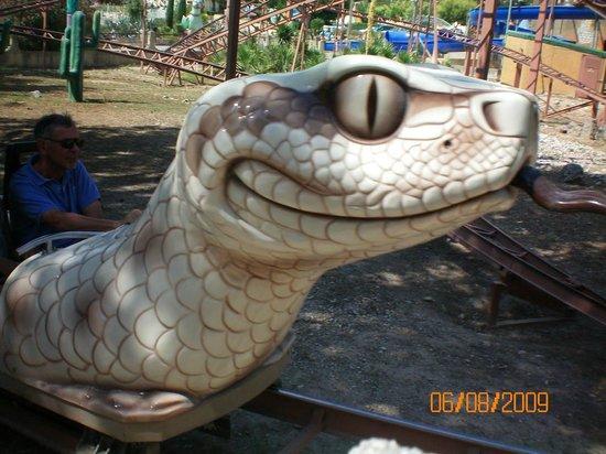 OK Corral : hopi le serpent
