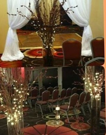 Embassy Suites by Hilton Jackson - North/Ridgeland: Ballroom