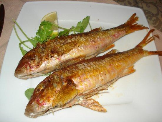 TENTAZIONI DI GUSTO : red mullet dish