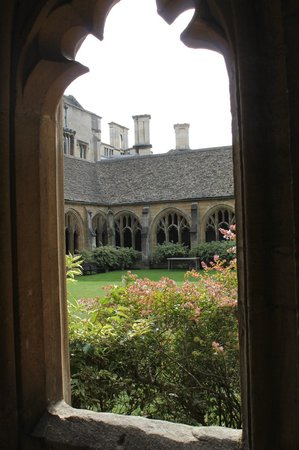 New College: Cloister