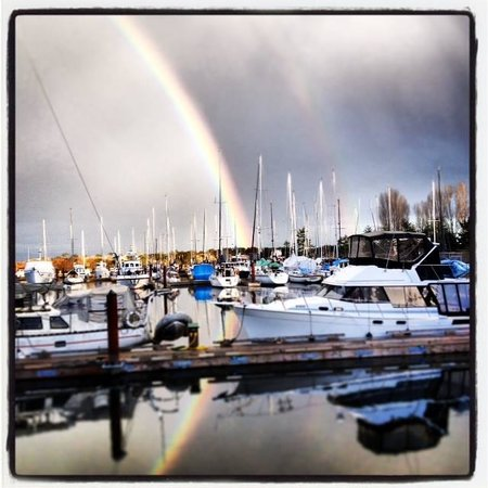 Pacific Playgrounds International RV Park, Cottages, Marina: Our Marina after a rain
