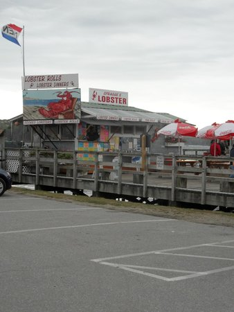 Sprague's Lobster : Look, no line!