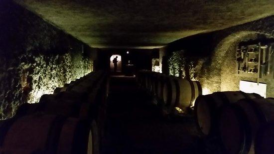 Marche aux Vins: underground ancient cellars
