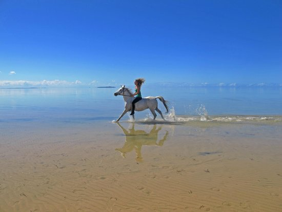 Vilanculos, โมซัมบิก: Riding with Mozambique Horse Safari